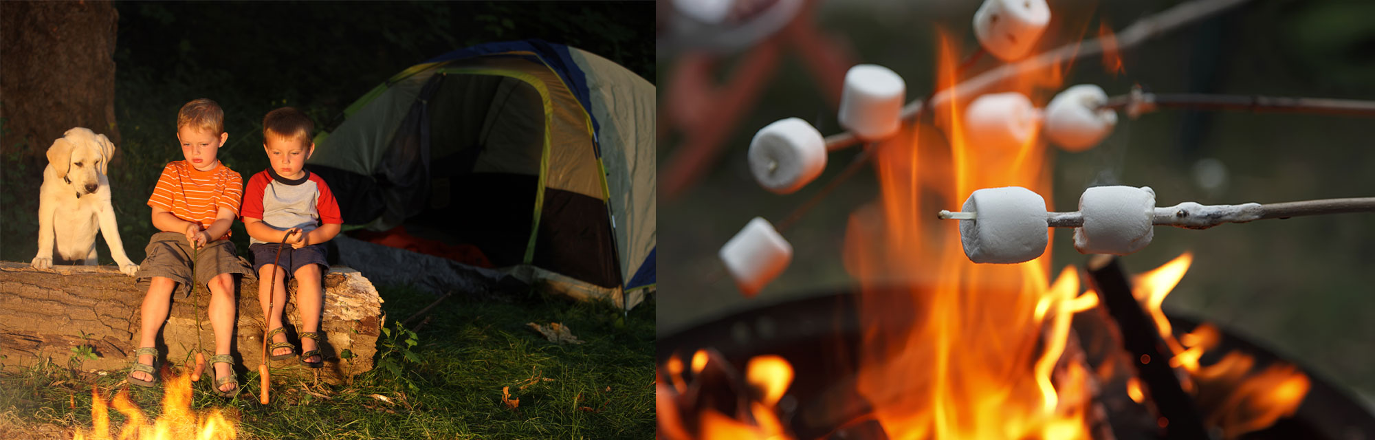 Camping Mosquito Repellent